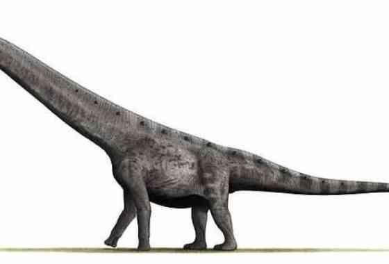 Un dinosaurio gigante descubierto en Argentina podría ser el animal terrestre más grande de la historia