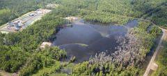 Dramático video: socavón gigante de Louisiana se traga los árboles