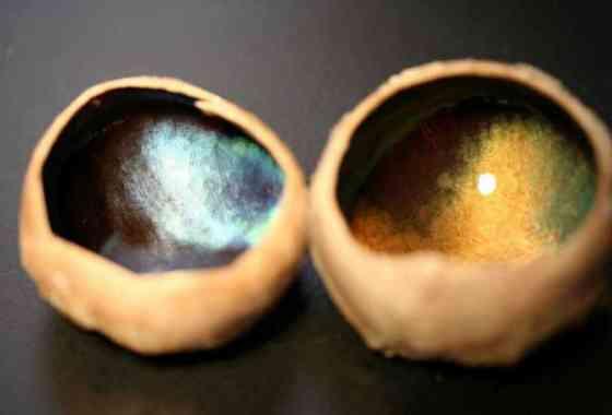 Los ojos del reno cambian de color con las estaciones