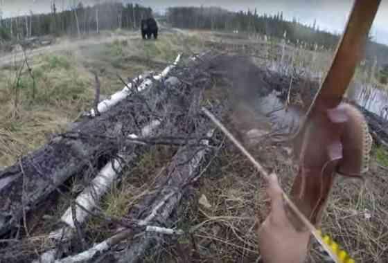Aterrador vídeo muestra un oso que carga contra un cazador