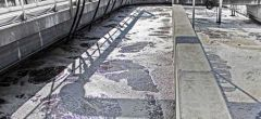 El Frankenstein de los virus gigantes encontrado en planta de aguas residuales