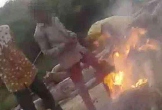 Adolescentes queman cachorros vivos y circulan el horrible vídeo en WhatsApp