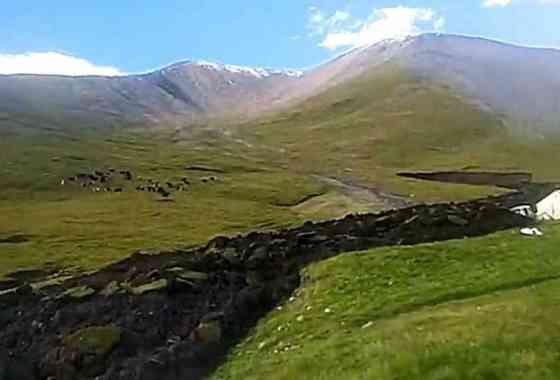 Extraño deslizamiento de tierra similar a lava a través de una ladera