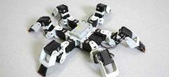 Marcha especial ayuda a este robot de seis patas a superar a los insectos