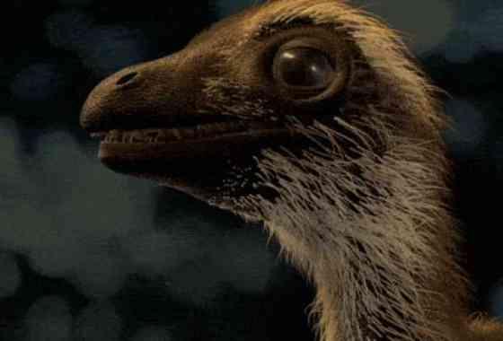 El 'adorable' bebé de Tyrannosaurus rex