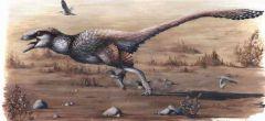 Dinosaurio con plumas era terrorificamente letal