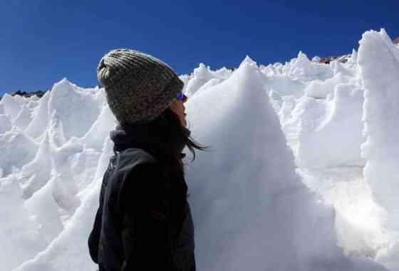 Incluso en escarpadas agujas de hielo volcánico, la vida encuentra un camino