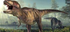 Los científicos creen que han encontrado una Tyrannosaurus rex 'embarazada'