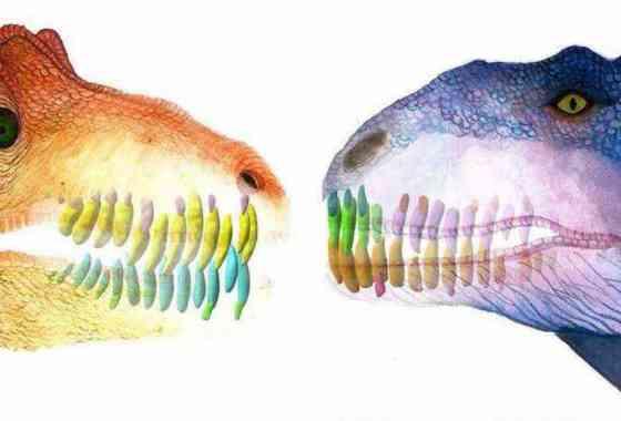 Dinosaurio carnívoro reemplazaba sus dientes como un tiburón