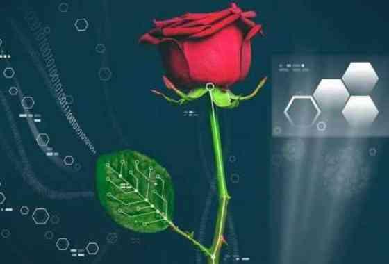 En electrizante avance, los investigadores crean circuito dentro de plantas vivas