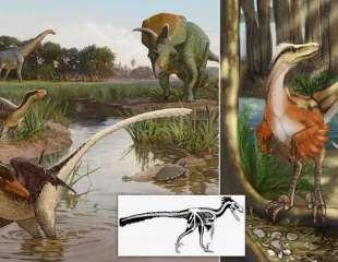 Este velociraptor recién identificado cazaba con la aterradora agilidad de un guepardo